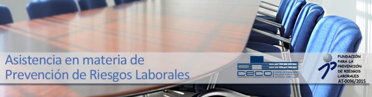 Programa de Apoyo técnico y Asistencia al empresario en cumplimiento de la normativa Preventiva